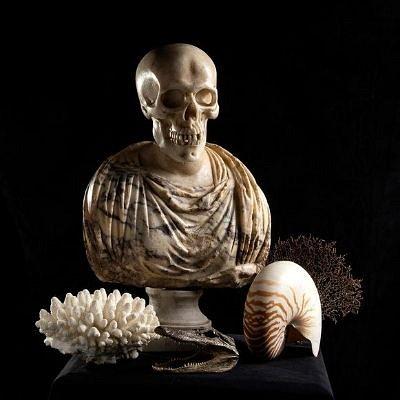 Auction 81 - Oddities, curiosities and wonders by Bertolami Fine Art
