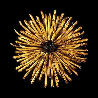 Smithsonian Craft Optimism - Judith Kinghorn Designs by Judith Kinghorn