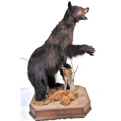 L&M Sept 18th, 2021 Fall Mancave Auction by Lewis and Maese Antiques & Auction Co.
