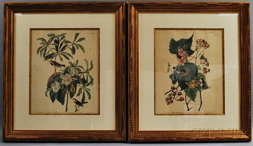 After John James Audubon (American, 1785-1851)      Two Framed Photo-reproductions: Bachman's Warbler
