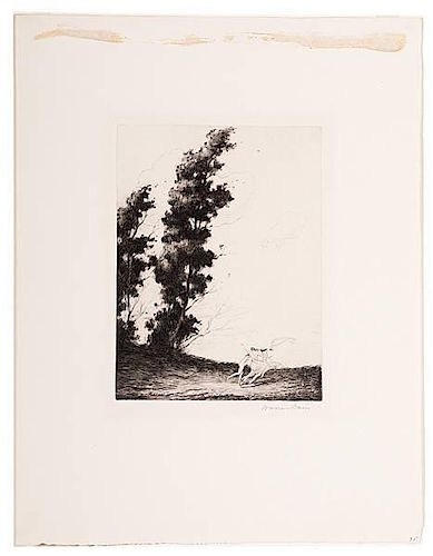 Woodland Nymphs by Warren Davis