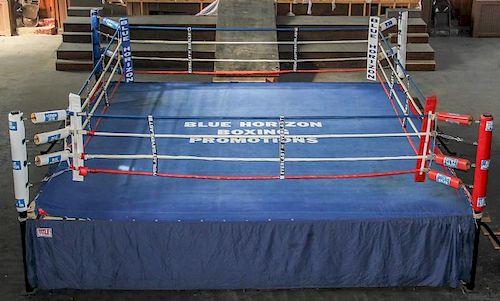 The Blue Horizon Boxing Ring w/Skins