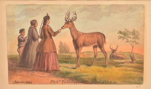 """Augustus Kollner Watercolor """"American Deer""""."""