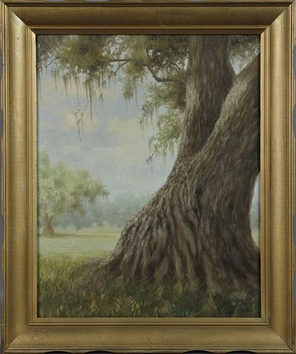 "Don Reggio (Louisiana), ""Moss Draped Oak Tree,"" 19"