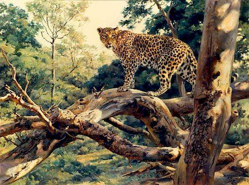 Donald Grant Wildlife Oil Painting Leopard