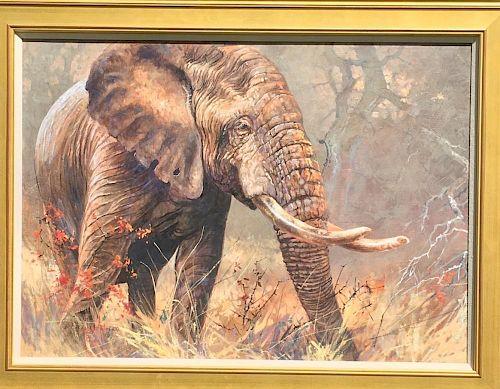 Kobus Moller Elephant Painting