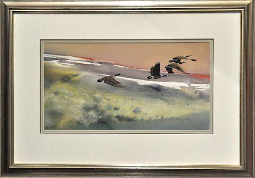 Morten Solberg Watercolor Canada Geese