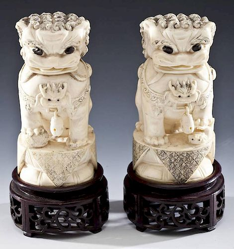 Pair of Ivory Carved Foo Lions