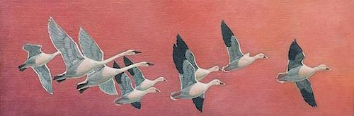 Francis Lee Jaques (1887-1969) Swans and Snow Geese