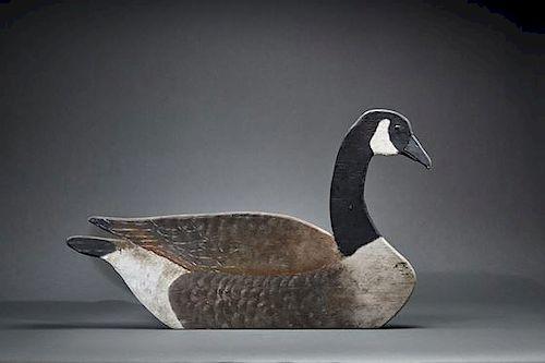 Oversize Goose Flattie