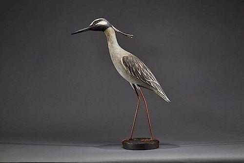 Yellow-Crowned Night Heron Spencer Tinkham (b. 1992)