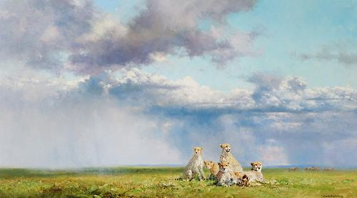 David Shepherd | The Angry Sky - Cheetahs