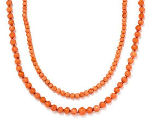 A Collection of Coral Bead Necklaces, 50.30 dwts.