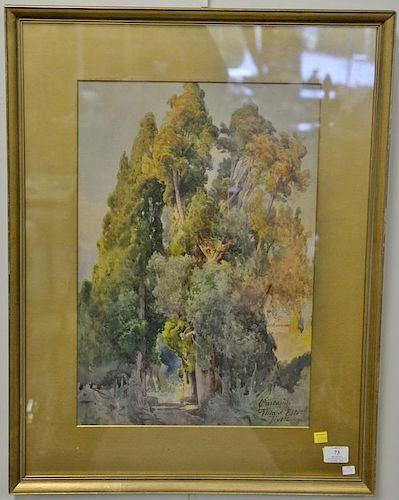 """Onorato Carlandi (1848-1939), watercolor, Trees in landscape, signed lower right: Carlandi Villa d'Este Tivoli, 21"""" x 14 1/2"""""""