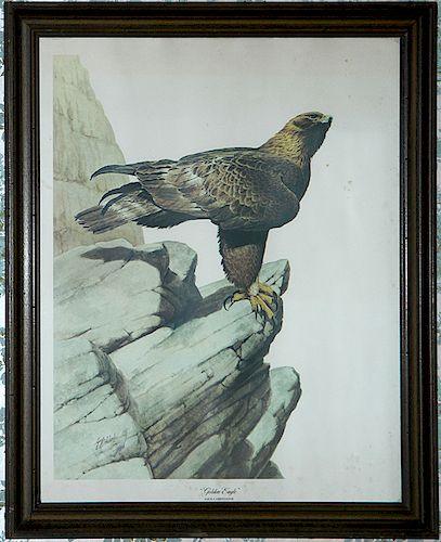 Guy Coleleach Eagle Print