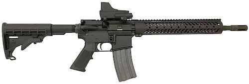 Custom Bushmaster XM15-E2S Semi-Auto Rifle