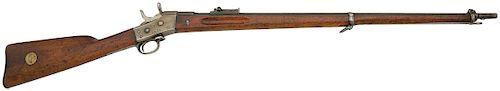 Swedish 1867/69 Rolling Block Rifle by Carl Gustafs