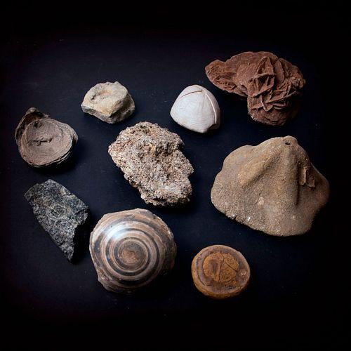 Mixed lot minerals (9 pieces)