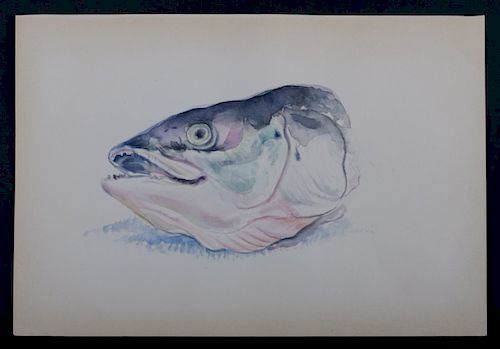 Lucian Michael Freud 1944 Fish Watercolor Style