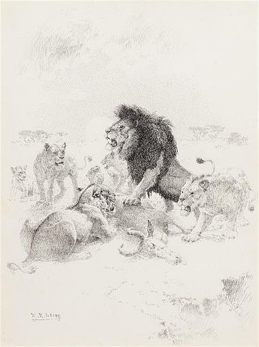 William Robinson Leigh, (American 1866-1955), Lion and Lioness