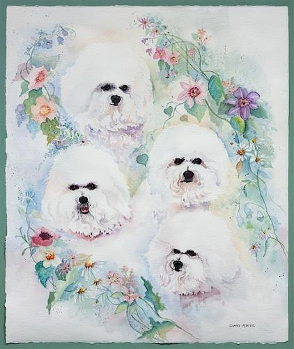* A Watercolor depicting Bichon Frise Sheet: 22 x 18 1/2 inches.