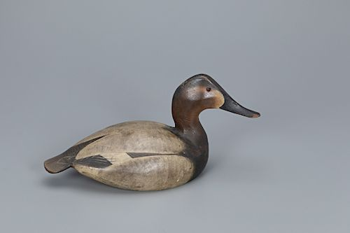 Classic 1936 Canvasback Hen Decoy, The Ward Brothers