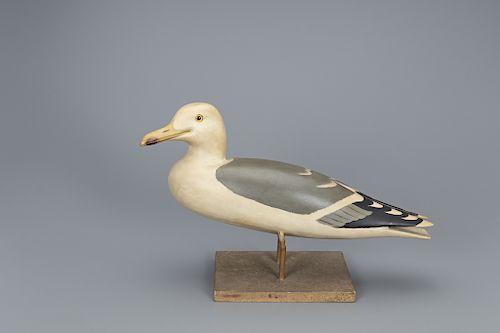 """The Wheeler Gull, Charles E. """"Shang"""" Wheeler (1872-1949)"""