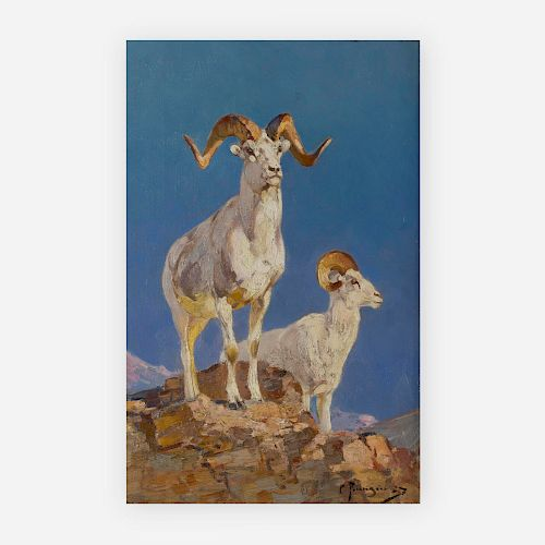 Carl Rungius - Dall Sheep