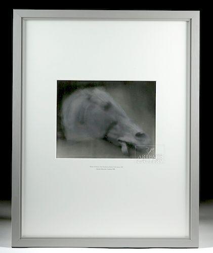 """Framed Peter Brandes """"Horse of Selene"""" Photograph"""