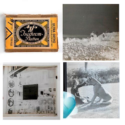 HISTORIC ORIGINAL MARTIN MUNKACSI ART DECO PHOTOGRAPHIC PLATES