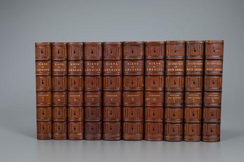 John James Audubon (1785-1851) The Birds of America &  Quadrupeds of North America