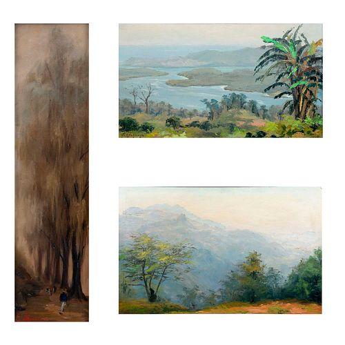 EDUARDO VILLANUEVA, Vistas de paisajes, Firmados y uno fechado 1962, Óleos sobre tela, Enmarcados, 59 x 94 cm Piezas: 3