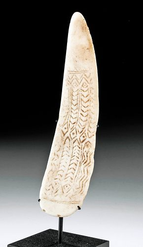 Ancient Tonga Lapita Incised Shell Artifact w/ Catalog