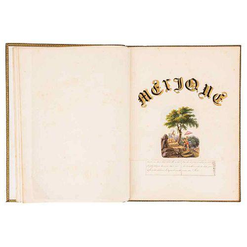 Mexique. Contiene: Descripción general de Mexique, la vegetación de México... 11 h., manuscripts + 11 watercolors.