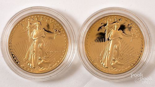 Two American Eagle 1 ozt. fine gold coins.
