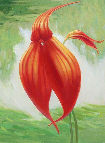 "Ren Yu (B. 1945) ""Masdevallia veitchiana Orchid"""