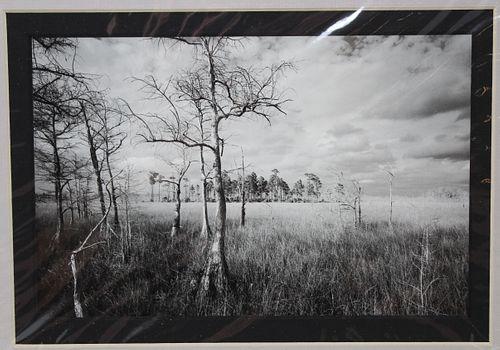 "Clyde Butcher (b. 1941) ""Loop Road #1"" Photo"