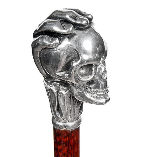 Mystical Silver Skull Cane