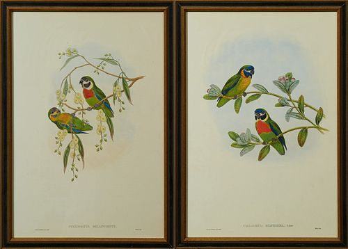 "John Gould & H.C. Ritcher, ""Cyclopsitta Suavissima,"" and ""Cyclopsitta Melarogenys,"" 20th c., pair of parrakeet prints, presented in..."