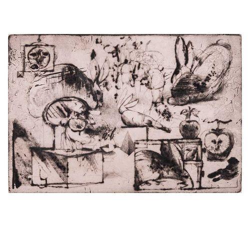 Alejandro Colunga. Sin título. Grabado, 10/10. Firmado. Enmarcado. 22 x 32 cm