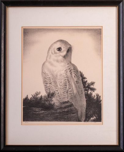 Stow Wengenroth (1906-1978). Matriarch Owl.