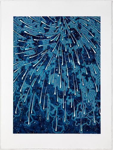 BARBARA TAKENAGA, Falling (blue concentrate)