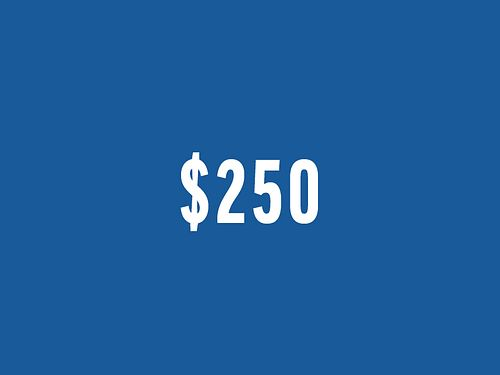 Fund a Need - $250