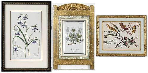 Group of 15 Framed Botanical Prints