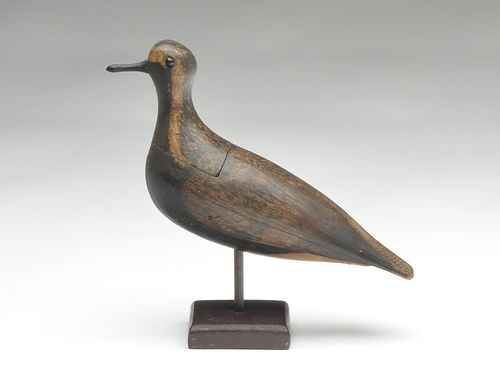 Hollow carved black bellied plover from Massachusetts, last quarter 19th century.