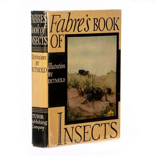 Detmold's Insects in Original Gift Box