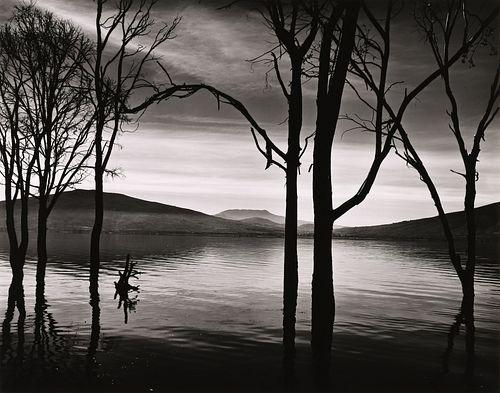 BRETT WESTON - Lake Patzcuaro, Mexico, 1976