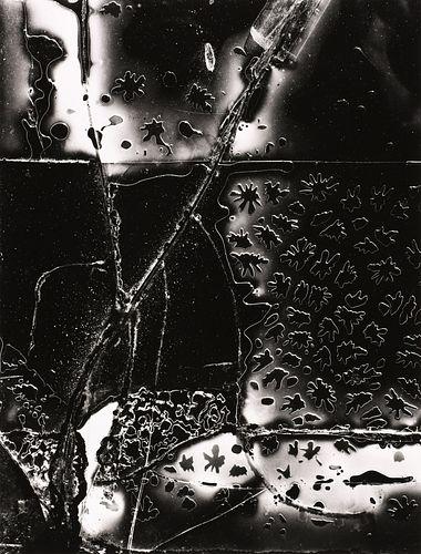 BRETT WESTON - Old Car Window, Garrapata, 1955