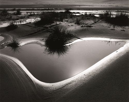BRETT WESTON - Tide Pool, Oregon, 1974