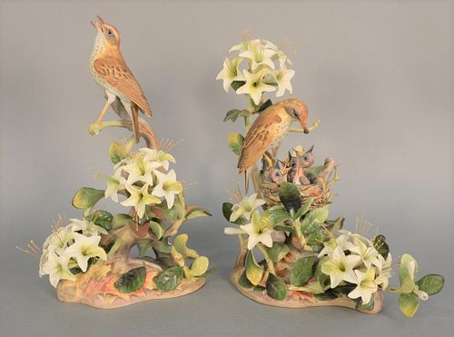 "Boehm pair of ""Wood Thrushes"", porcelain sculptures to include female feeding chicks, and a male, ht. 15 1/2"" and male ht. 15 1/2""."